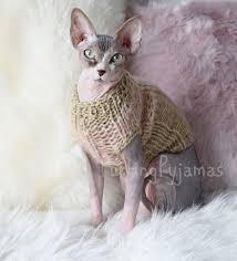 sphynx sweaters sweater for sphynx cat purring pyjamas