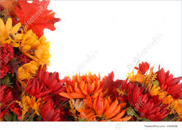 autumn flowers autumn flowers stock picture i1439458 at featurepics