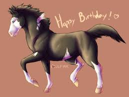 Horse Birthday Meme - horse information for beginners best image konpax 2017