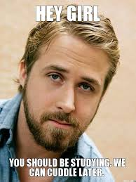Ryan Gosling Meme Hey Girl - hey girl you should be studying we can cuddle later jpg 525纓700