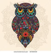 vector illustration ornamental owl bird illustrated stock vector