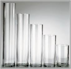 Cheap Clear Vases For Centerpieces by Clear Plastic Vases For Centerpieces Home Design Ideas