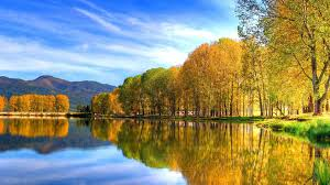 nature lake reflections wallpapers lake golden nature sky fall river shore amazing reflection