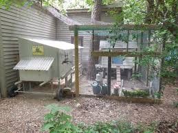 hen hideout backyard chickens