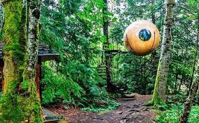 hanging hotel in canada called the free spirit spheres