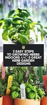 inside herb garden best growing herbs ideas on pinterest indoors garden and plants