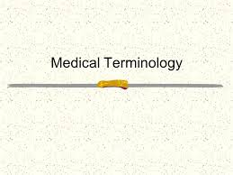 medical terminology ppt download