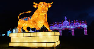 festival of light birmingham is the magical lantern festival at birmingham botanical gardens any