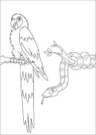 kids fun 41 coloring pages diego diego