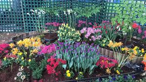 melbourne international flower and garden show album on imgur