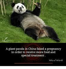 Hairless Bear Meme - 25 best memes about giant panda giant panda memes