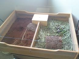 how to build an indoor tortoise habitat re using everyday items