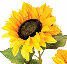 silk sunflowers 34 artificial silk golden sunflower bush bushes and