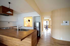 asian kitchen design minimalist apartment