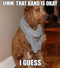 Hipster Dog Meme - hipster dog umm that band is okay i guess weknowmemes