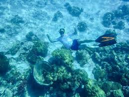 Wyoming Snorkeling images Snorkeling ko rok with dive relax underwater magic in thailand jpg