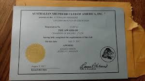 australian shepherd club of america ronin australian shepherds home facebook