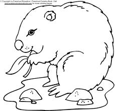 Www Preschoolcoloringbook Com Groundhog Day Coloring Page Groundhog Color Page