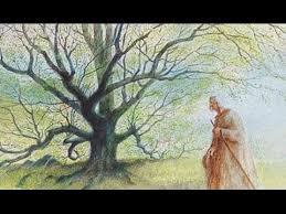 ladari andria l homme qui plantait des arbres jean giono dit par philippe