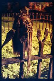 make your own halloween props 22 best shrunken heads images on pinterest shrunken head