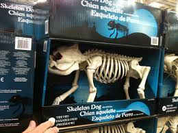 Halloween Posable Skeleton Some New Products At Costco U2013 August 6 2015 Addicted To Costco