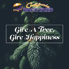100 california backyard trees 100 country