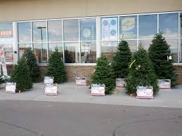 What Trees Are Christmas Trees - home depot christmas tree sales lizardmedia co