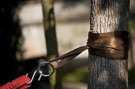 hammock tree straps by hammock sky best