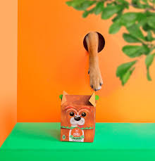 this treat packaging is absolutely adorable the dieline