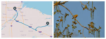 Map Testing Ohio by 9 Last Minute Spring Trips From Toledo Ohio Story Matters