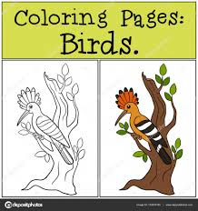 coloring pages birds cute beautiful hoopoe on the tree branch