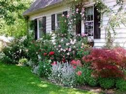 cottage garden ideas information database
