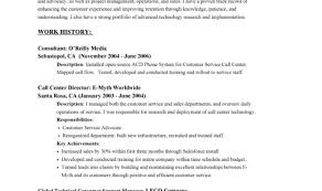 resume curious executive resume com trendy executive resume