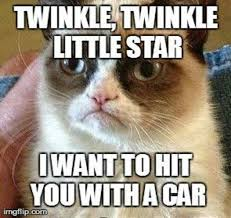 Angry Cat Memes - memes angry cat image memes at relatably com