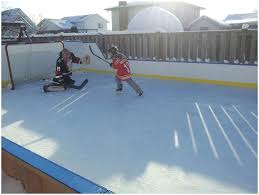 backyards trendy backyard roller hockey rink backyard roller