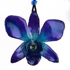 blue dendrobium orchids purple blue dendrobium orchid flower necklace and earrings set