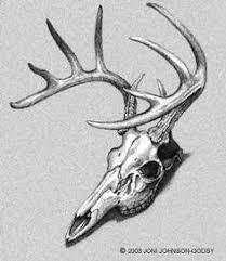 deer skull idea tattoos deer skull