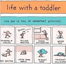 Funny Toddler Memes - life with a toddler the day is full of important activities 1 aaa ya