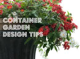 Home Garden Design Tips by Beautiful Container Garden Designs U2013 Home Garden Joy