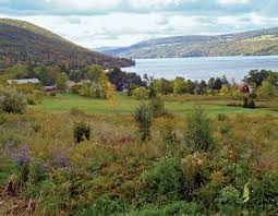 New York lakes images Finger lakes lakes new york united states jpg