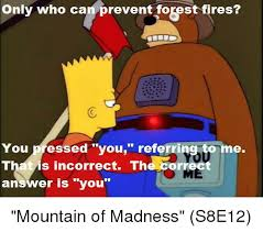 Only You Can Prevent Forest Fires Meme - only who can prevent forest fires you pressed you referring to me