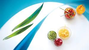 tropical cocktails martha stewart