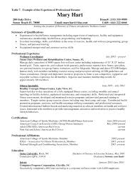 professional experience exles for resume of resumes shalomhouse us