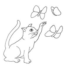 c is for cat coloring page top 20 free printable cat coloring pages for kids