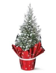 mini real tree 1 99 from thursday lidl hotukdeals