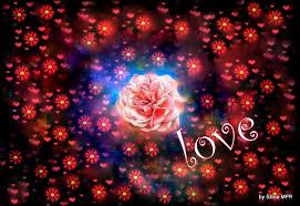 imagenes gratis animadas para celular imágenes para celulares de amor wallpaper hd para bajar gratis 3