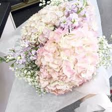 florist in nc daniel s florist 52 photos florists 2829 jones franklin rd