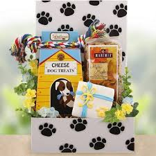 thinking of you care package thinking of you dog and owner care package get well gifts for dogs