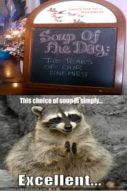 Raccoon Excellent Meme - my inner evil raccoon intensifies by darthmaster meme center