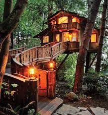 real life tree house in santa monica beautiful photos of places